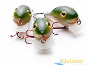 Bass Fishing Bait